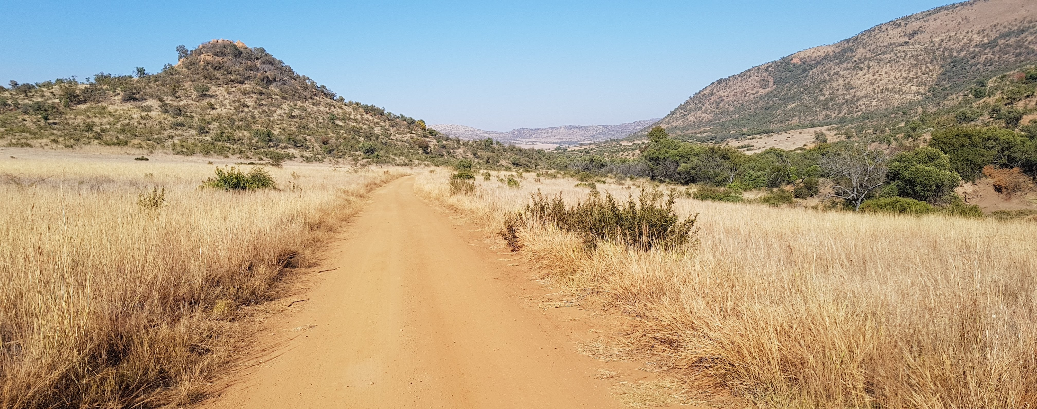 Self drive to the Pilanesberg Game Reserve